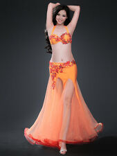 New Belly Dance Costume Set Bra Top Belt Skirt Dress Rio Carnival Bollywood 2PCS
