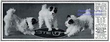 Steiff Pinscher Cäsar Reklame 1913 Hund Ist das ein Pintscher ? Werbung Dog +