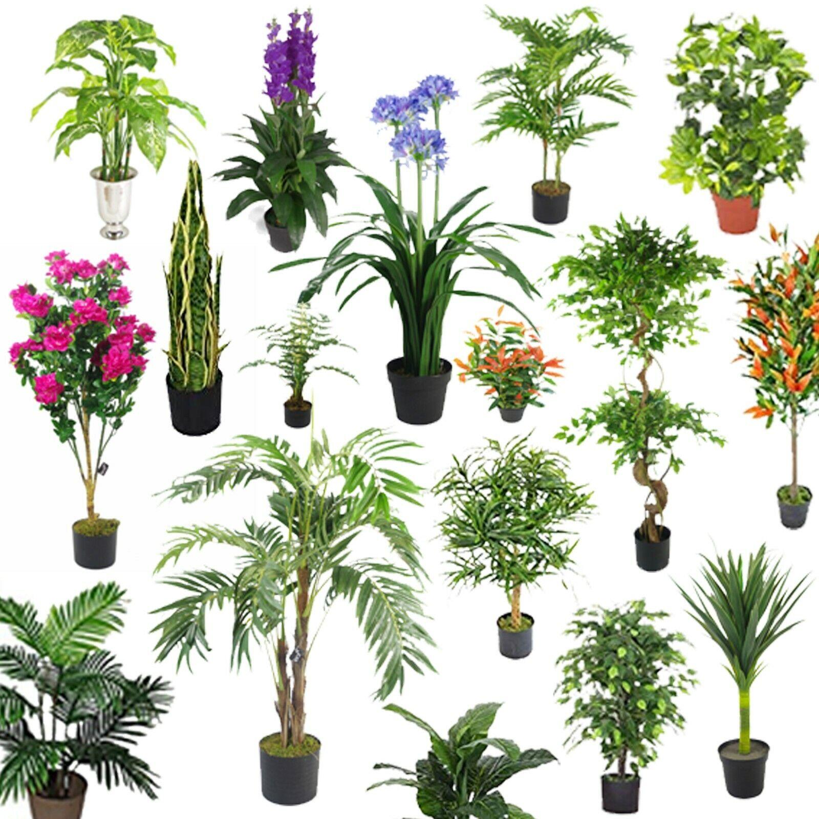 Groß Künstlich Palmbäume, Fikus Pflanzen, Bambus Tropisch Yukka Sehr Realistisch