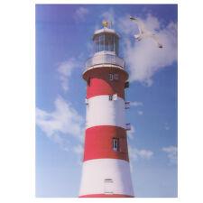 Meereskante Leuchtturm 3D Bild   Abmessungen: 29.5 x 39.5cm