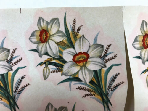 Ceramic decals narcissus large pattern lot of 16
