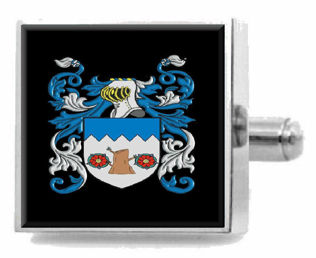Ashe Irlanda Irlanda Irlanda Araldica Stemma argentoo Sterling Gemelli Inciso Messaggio Box 203772