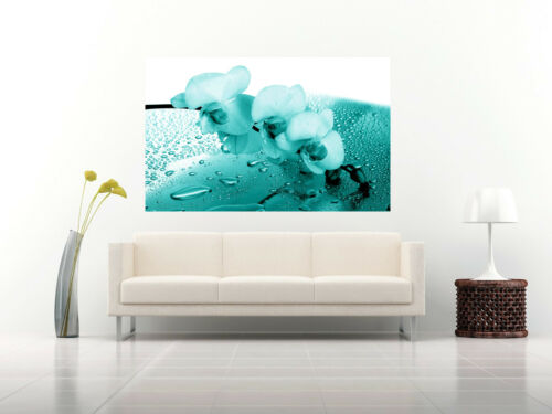 ALL SIZES Teal Orchid Floral Canvas Wall Art Picture Print