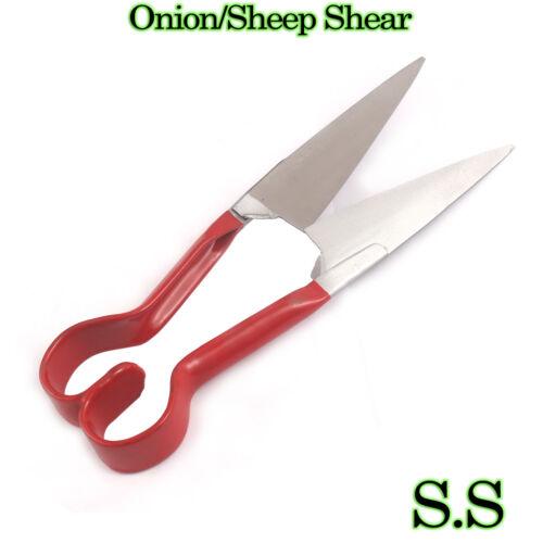 Oignon Harvest Shear /& Moutons Cisaille-boîte de dix Cisaille
