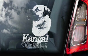 Details about Kangal on Board - Car Window Sticker - Anatolian Shepherd Dog  Sign Decal - V01