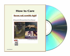 how to care raccoon coati cacomistle ringtail including panda rh ebay com ringtail user guide Operators Manual