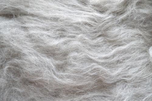 Light Grey Wolf Blend Carded Wool Batt Undyed Natural Shetland Wool Felt Spin