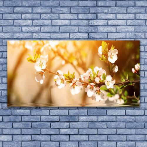 Acrylglasbilder Wandbilder aus Plexiglas® 140x70 Blumen Pflanzen