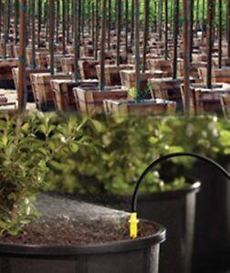 Spray Stake 50 Pot Nursery Drip Irrigation Water System