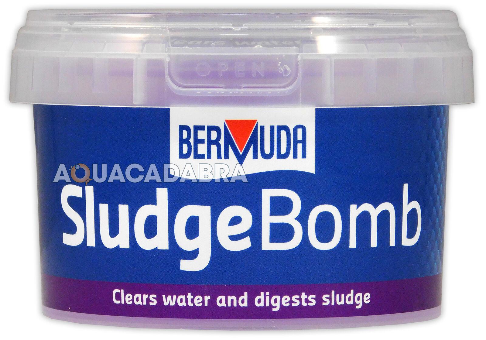 Bermuda Sludge Bomb Pond Crystal Clear Water Breaks Down Waste Healthy Fish Koi