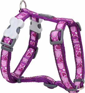 Red-Dingo-purpura-amor-corazon-arnes-para-perro-o-cachorro-Tamanos-XS-LG-Libre-P-amp-P