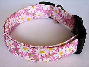Charming Pink With White Daisies Daisy Flower Dog Collar Ebay