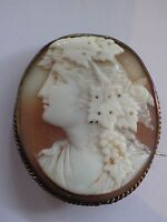 Antique / Vintage Carved Shell Cameo Brooch