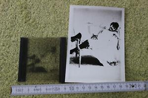 alte Foto Fotoplatten Glasplatten Dias, Erotik um 1900 mit