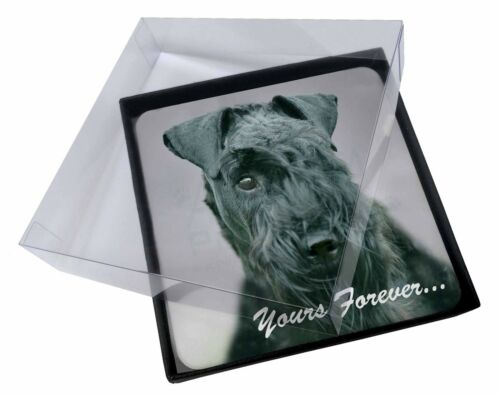 4x Kerry Blue Terrier 'Yours Forever' Picture Table Coasters Set in Gi, ADKB1yC