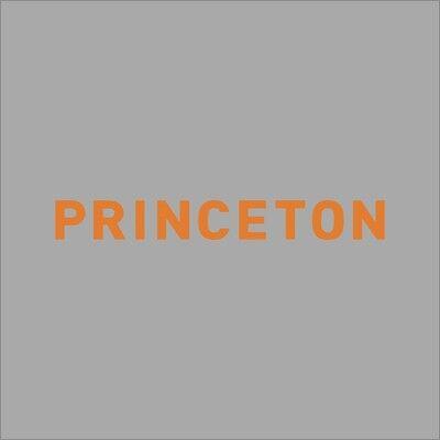 Princeton Tigers College Logo 1C Vinyl Decal Sticker Car Window Wall