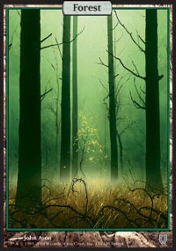 Forest 1x 140 x1 English -BFG- MTG Magic Unhinged Heavy Play
