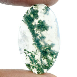 Cts-23-45-Natural-Landscape-Moss-Agate-Oval-Cabochon-Loose-Gemstone
