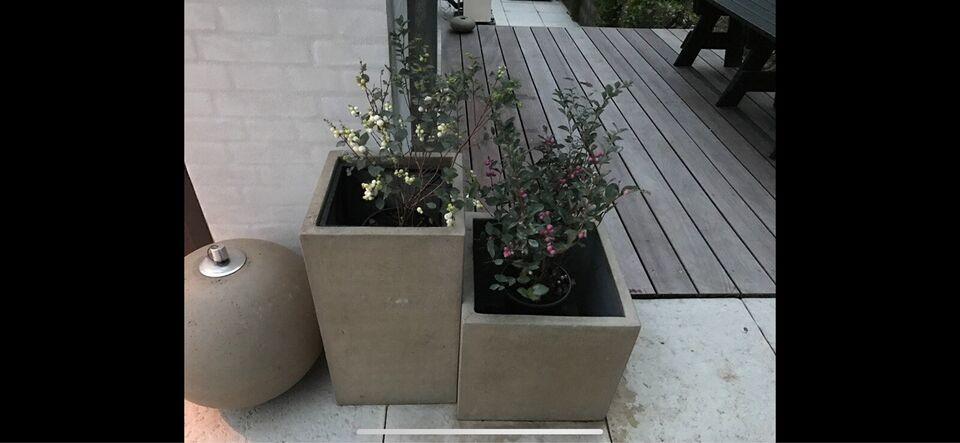 Krukker, Blomsten Hornbæk ilse Jacobsen , Let beton