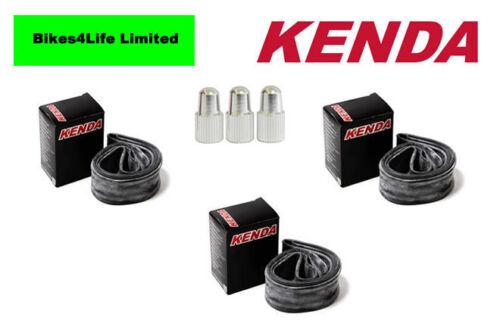 3 x Kenda Inner Tube 26 x 1.0 Presta FREE Alloy Valve Caps KT36M