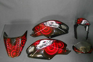 Used Genuine Ducati Monster 696 796 1100 Fairing Panel Art Custom
