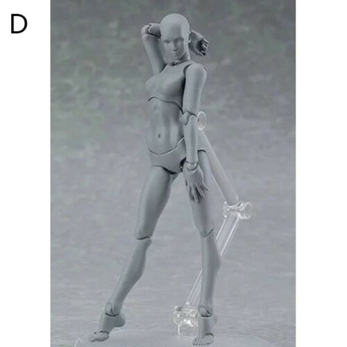 Kids Toy PVC Figure Ferrite Action Play Arts Kai Anime Body Model Drawing Figma