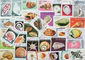 SHELLS marvelous collection of 50 different stamps (Lot#DP)