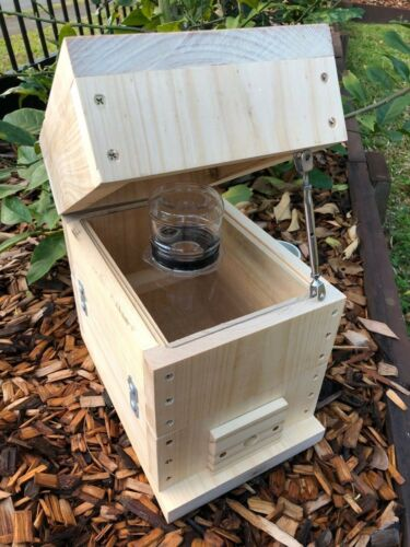 Stingless Native Bee Hive Bare Timber OATH BeeHive Perspex Honey Jar Inc Roof