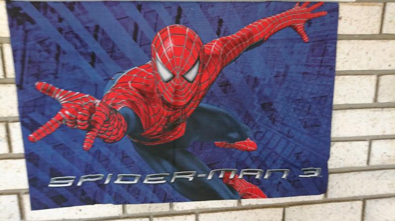 Spider man pillow case