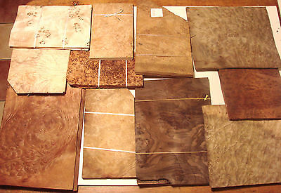 Burr Veneer Mix incl.walnut, golden madrone, redwood,thuya,olive ash,oak.. (906)