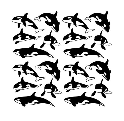 Orca Vinyl Decals X 20 Killer Whale Walls Furniture Water Bottle Stickers Etc
