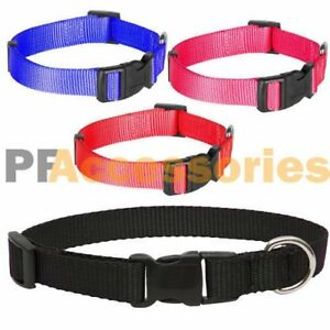 Small-Dog-Puppy-Cat-Pet-Adjustable-Nylon-Collar-Black-Red-Blue-or-Pink