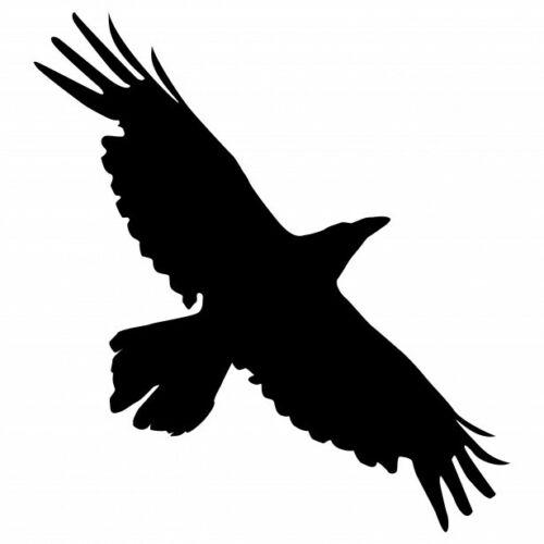 Flying Cuervo Cuervo Pájaro de la plantilla A4//A5//A6