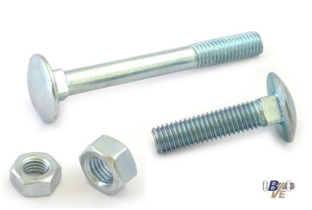 Schloßschrauben / Flachrundschrauben mit Muttern DIN 603 Stahl verzinkt  M8