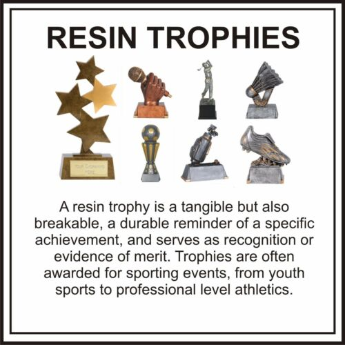 FOOTBALL MAN OF THE MATCH RESIN TROPHY FLATBACK 2D FREE ENGRAVING A1170A B7