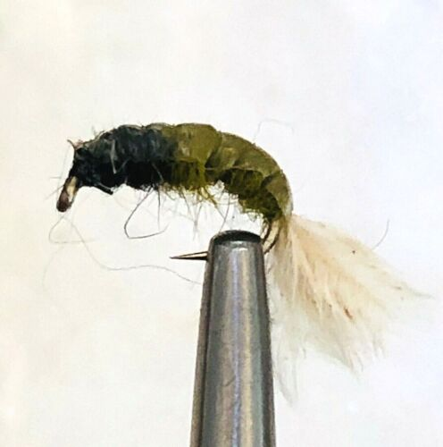 CADDIS PUPA LARVA SCUD NYMPH TROUT FLY FISHING FLIES OLIVE 5 FLIES X SIZE #14