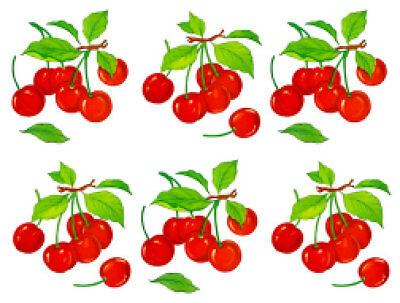 VinTaGe IMaGe 12 GinGHaM CHeRRieS SHaBbY CaNisTeR LaBeLs WaTerSLiDe DeCALs