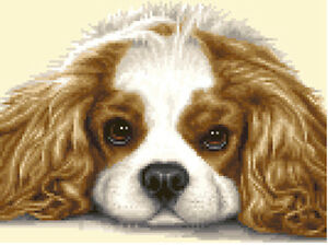 Cavalier king charles spaniel dog full counted cross stitch kit image is loading cavalier king charles spaniel dog full counted cross altavistaventures Images