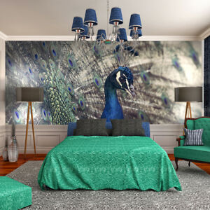 fototapete vlies der stolze pfau tapeten fototapeten f r. Black Bedroom Furniture Sets. Home Design Ideas