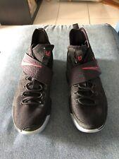 size 40 9bdd4 93028 item 1 Nike LeBron 14 XIV