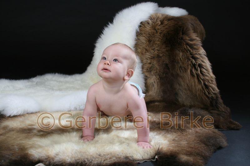 Pelle di Pecora Pecora pelle Sheepskin Conceria Betulla Germany