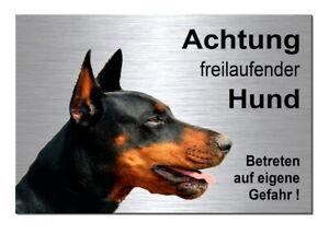 Dekoration Außen- & Türdekoration Freilaufender-dobermann-30x20 Cm Alu-edelstahl-optik-schild-warnschild-hund Klar Und GroßArtig In Der Art