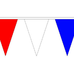 54 Flags Fete Party Chelsea Royal Blue /& White Triangle Flag Bunting 20m