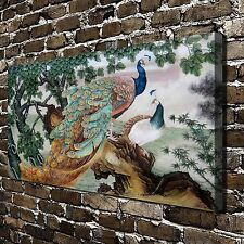 Peacock couples Chinese painting HD Print on Canvas Home Decor Wall Art Pictures