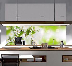 Details zu Küchenrückwand Spritzschutz Fliesenspiegel Badfliese PLEXIGLAS®  Acrylglas DP43