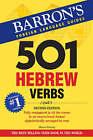 501 Hebrew Verbs by Shmuel Bolozky (Paperback, 2008)