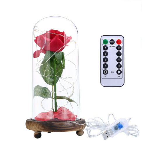 LED Night Lamp Bear Rose Glass Dome Party Light Valentines Wedding Gift Decor