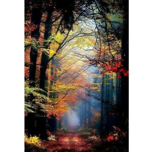 DIY Round Drill 5D Diamond Painting Forest Path Embroidery Home Decor and Beauty