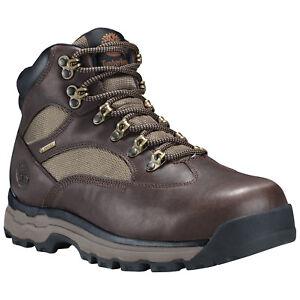 43e59941 Men's Timberland Chocorua Trail 2 Mid Gore-Tex Hiking Boot Dark ...