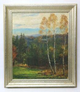 Öl Gemälde mit Birken und Landschaft unleserlich Signiert Denzinger ?